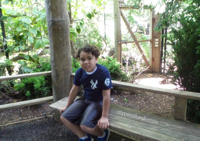 Atypical-Familia-Bronx-Zoo-Lisa-Quinones-Fontanez
