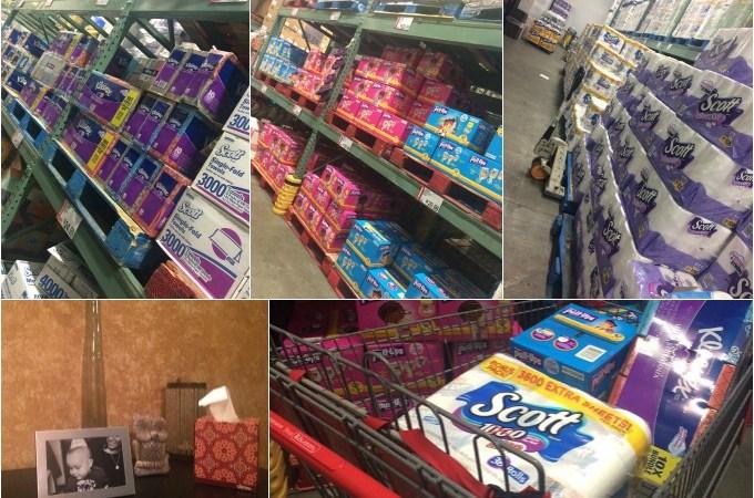 Shopping-Kimberly-Clark Products at BJs