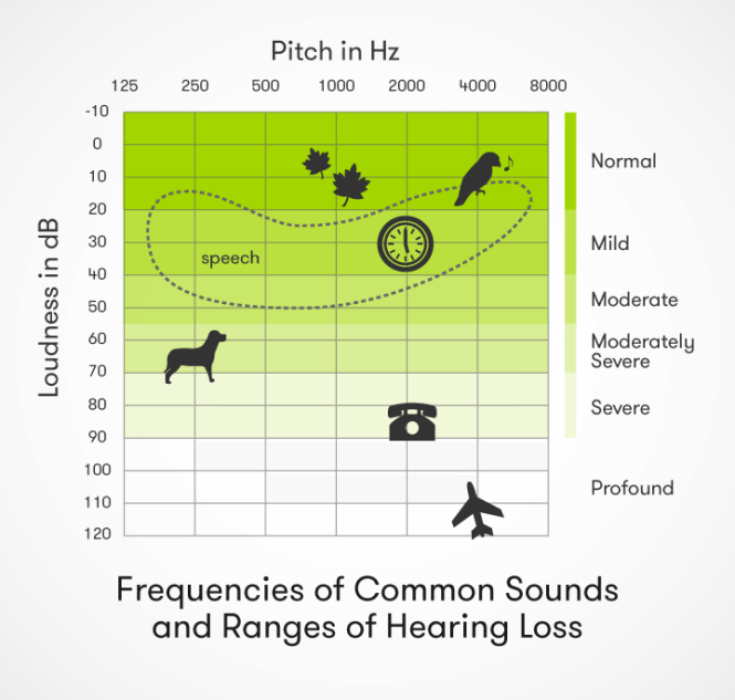 It is more common in people with hearing loss, as they perceive less background noise to distract them 2