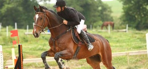 Centre Equestre de Mahalon