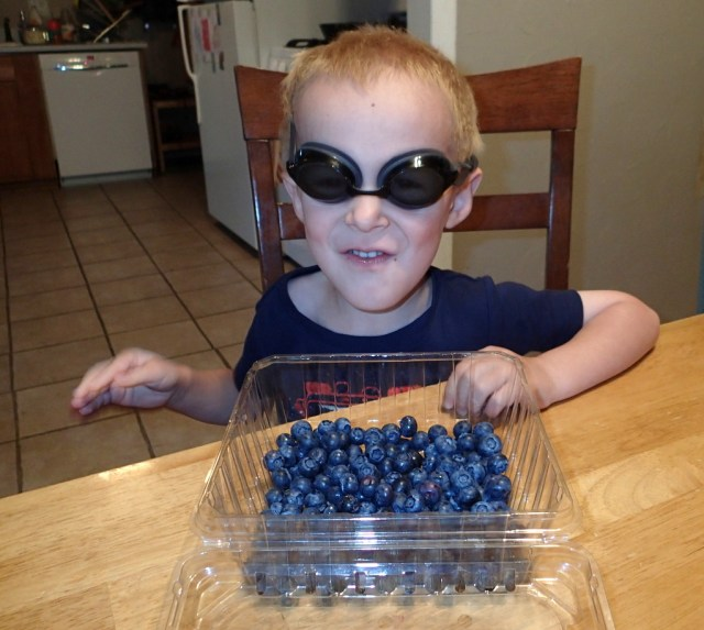 Super Cooper eating blueberries. Or is it that he thought I wouldn't recognize him in disguise and he'd miss a lecture on not eating all the berries!