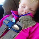 Ellen fell asleep before we left the street the zoo was on.