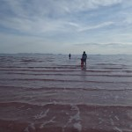 The pink water of the Great Salt Lake.