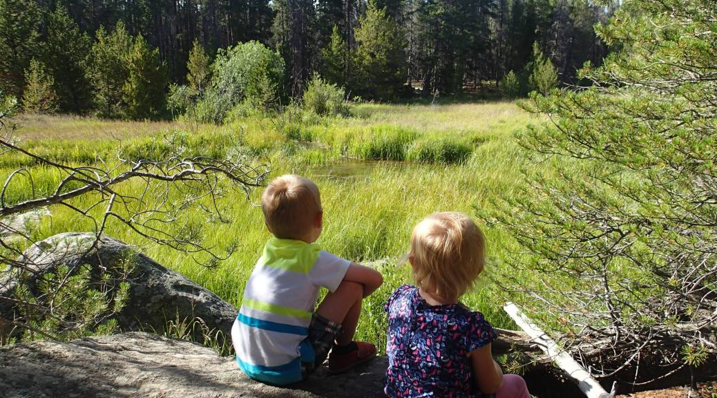 Kids having a Walden moment on our weekend trip to Rocky Mountain National Park.