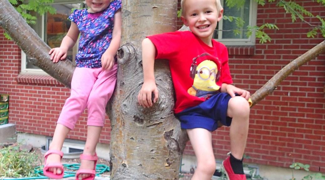 Two little monkeys sitting in a tree.