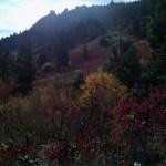 We took them to El Dorado State Park where we saw beautiful fall colors, striking mountains, and crazy rock climbers.