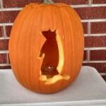 Our groundhog day pumpkin