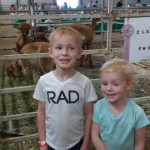 Kids making funny faces next to the llamas.
