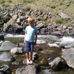 Cooper in the stream.