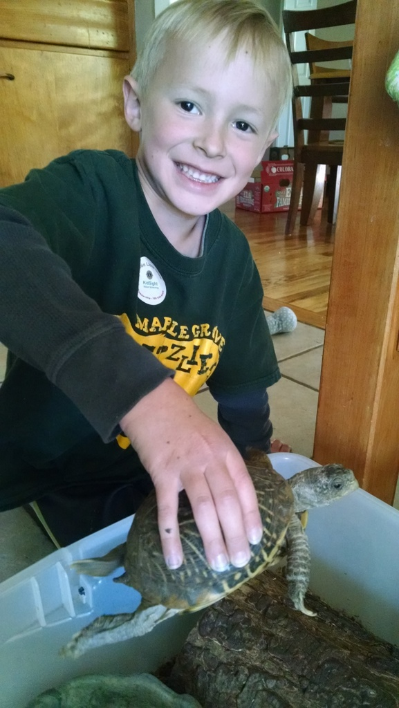 Cooper got to bring the class turtle, Sheldon home for a weekend.