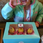 Her expensive birthday cupcakes.