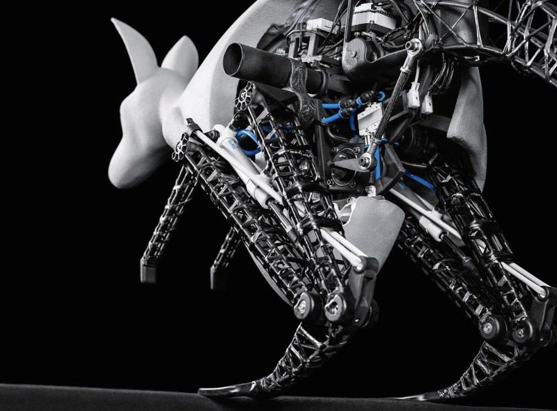 Bioniczny kangur skacze niczym prawdziwy