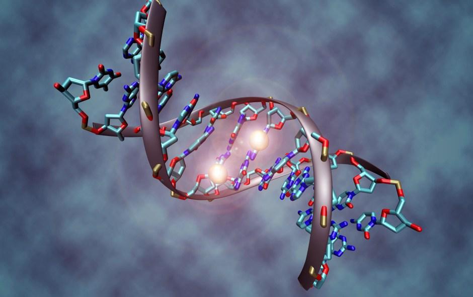 Czym jest CRISPR?