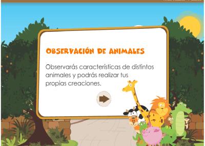 Observación de Animales
