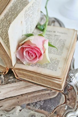 Books with Rose