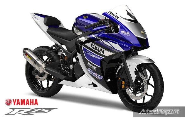 Yamaha 250cc R25