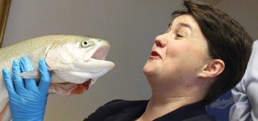 Eloping with a Salmon for Union Party