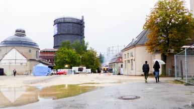 aschezufarbgut-c-auxkvisit-51