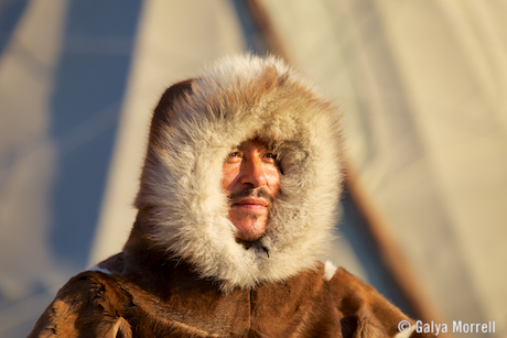 Arctic Dreamer. Photo © 2014 Galya Morrell