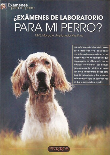 perro para examen de laboratorio