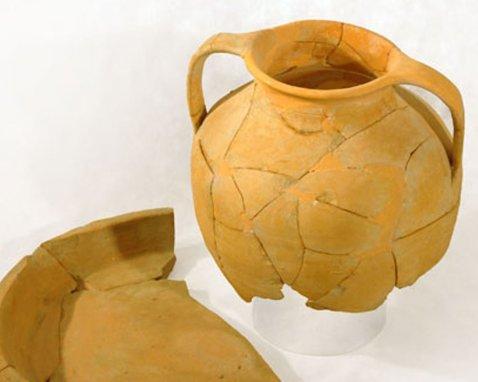 Comune di Sassuolo | Minerva Medica | Mostra archeologica