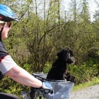PoCo Trail - the Traboulay PoCo Cycling Trail in Port Coquitlam - An Average Joe Cyclist Guide