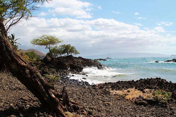 Naupaka Black Sand Beach on Maui