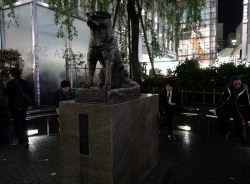 Hachiko Statue at Shibuya Station