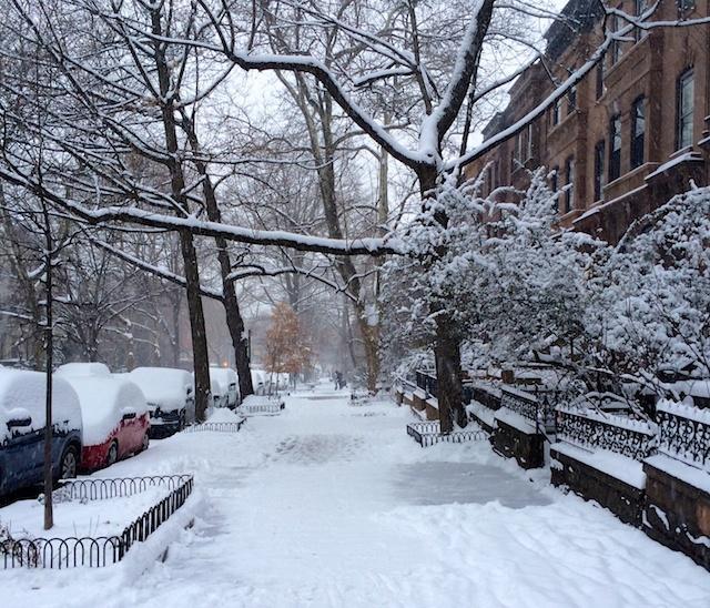 WinterinBrooklyn
