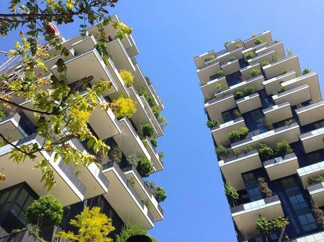 edifício-coberto-por-árvores-7