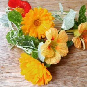 Calendula and Nasturtium flowers - great for summer salads and cooking