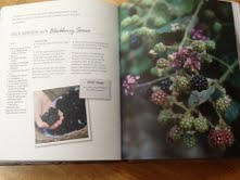 The book is beautifully illustrated and has over 100 recipes