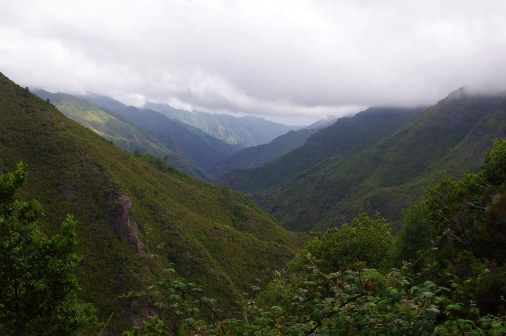 Madeira Teil 7: Weltnaturerbe Lorbeerwald