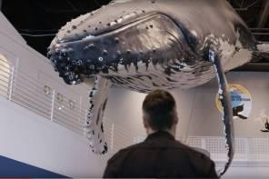 A Whale of a TaskScreencap1