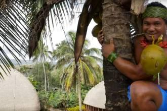 How to climb a coconut tree Screencap5