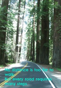 no distance too far