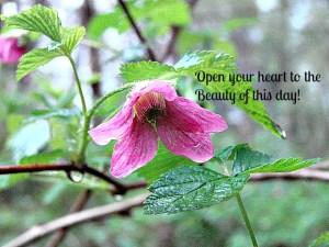 openheartbeauty2