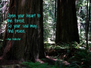 image quote open your heart...