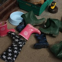 Wellies, wellies, everywhere...