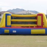 Bouncy Boxing w/Gloves ($200)