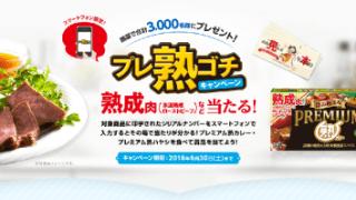 【終了】2018/6/30グリコ プレミアム熟カレー プレ熟ゴチキャンペーン