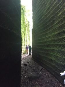 鋸山アドベンチャーコース回廊