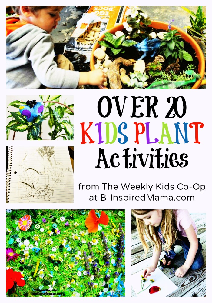 20+ Cool Kids Plant Activities - Perfect for Spring and Summer