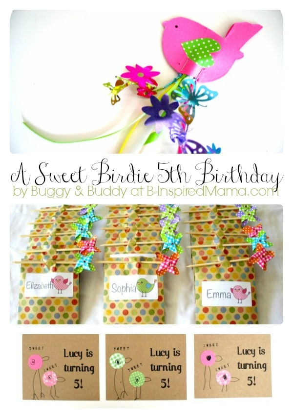 Sweet Bird Theme Party Ideas [From the Mamas]