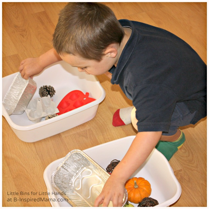 Sorting Objects for a Fall Preschool Science Activity at B-Inspired Mama