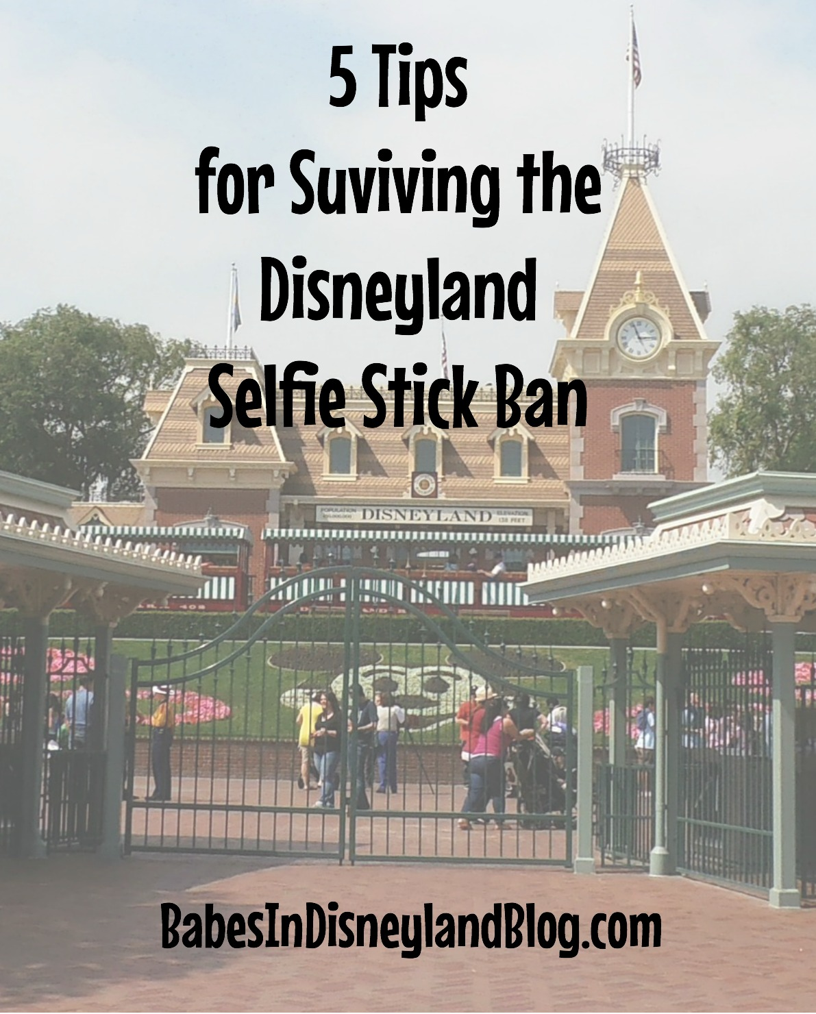 how to survive the disneyland selfie stick ban babes in disneyland. Black Bedroom Furniture Sets. Home Design Ideas