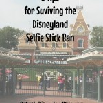 How to survive the Disneyland selfie stick ban