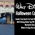 Everything you need for a Walt Disney Halloween costume