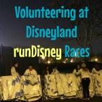 volunteer mylar rundisney