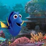 Finding Dory and the Monterey Bay Aquarium